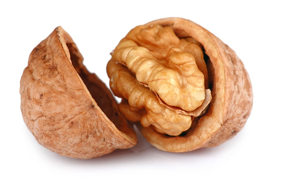 The male g-spot looks sort of like a walnut